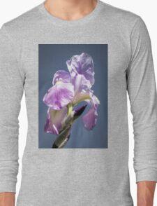 A Sky Full of Iris Long Sleeve T-Shirt