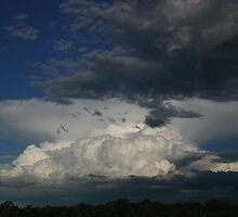 Approaching Storm by kerryedward