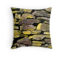 Rock Wall Detail Throw Pillow