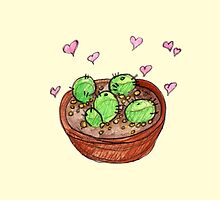 pot o cacti by HiddenStash