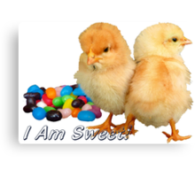 I Am Sweet! - Chicks & Jelly Beans Canvas Print