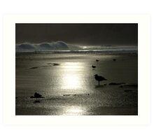 Anglesea Australia Art Print
