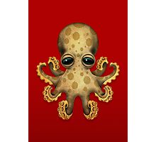 Cute Brown Baby Octopus Photographic Print