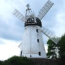 Fulwell Mill by Peter Reid