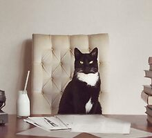 Corporate Cat by Catherine Holmes