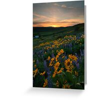 Blue and Gold Sunset Greeting Card