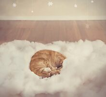 Cat In The Clouds by Catherine Holmes