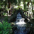 Waterfall in Creature Garden.. Bendigo by judygal