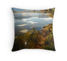 Lake Hayes Throw Pillow