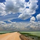 African Sky, Etosha National Park, Namibia, Africa. by photosecosse /barbara jones