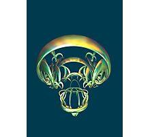 Legal Alien's Skull Photographic Print