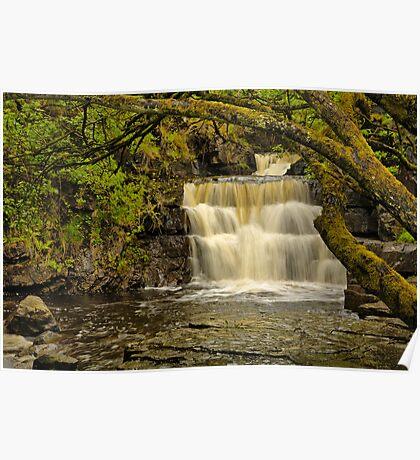 Bowlees Beck Waterfall Poster