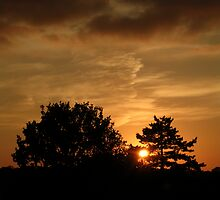 Sunset over Watford by Terry Walker