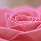 Gentle opening by Kimberley  x ♥ Davitt