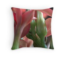 Macro flowers  Throw Pillow