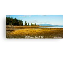 Rathtrevor Beach Canvas Print