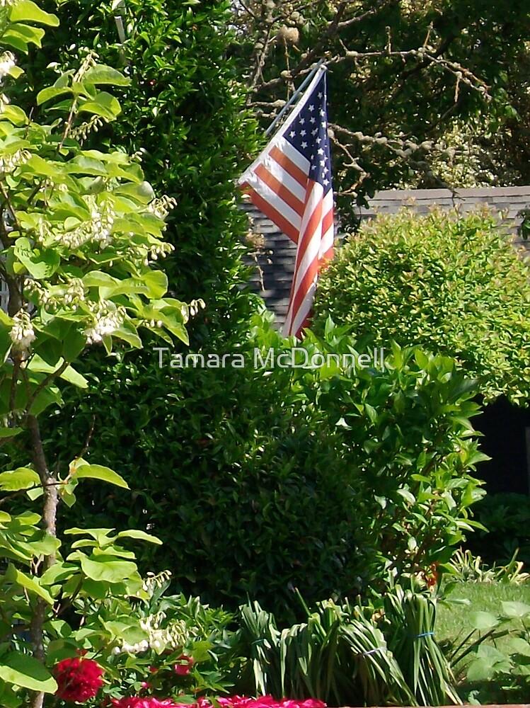 I pledge allegiance by Tamara Lindsey