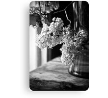 Monochrome Lilacs Canvas Print