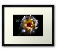 Amazed By You ................. Framed Print