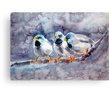 Talking birds Canvas Print