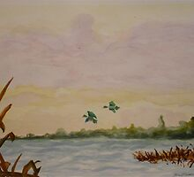 Duck Blind View by Tina Messec