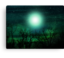 By The Light Of The Moon Canvas Print