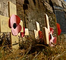 Rememberance by Dave Emmerson