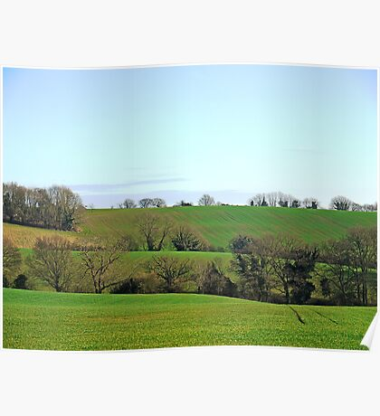 Sussex Fields Poster