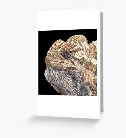 Chameleon With Sinister Facial Expression Isolated Greeting Card