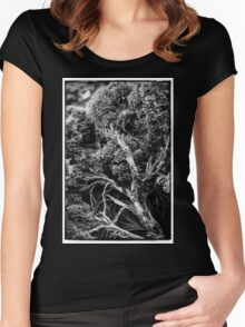 Black and white botany - 1 Women's Fitted Scoop T-Shirt