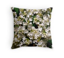 Sweet Confection Throw Pillow