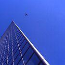 In Flight 2 by Roc Ahrensdorf