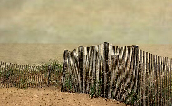 Stormy Beach by Gayle Dolinger