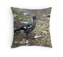 Juvenile Magpie Throw Pillow