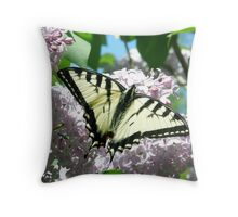 First Swallowtail of 2009 Throw Pillow