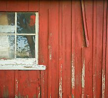 Red Shed Window 2 by Jesse J. McClear