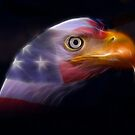 Land of the Free... by Beverly Lussier