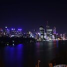 The Brisbane Skyline by Vaughan Whitworth