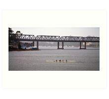 Drummoyne rowers Art Print