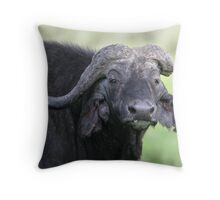 What! Throw Pillow