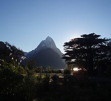Peak by Paul Finnegan
