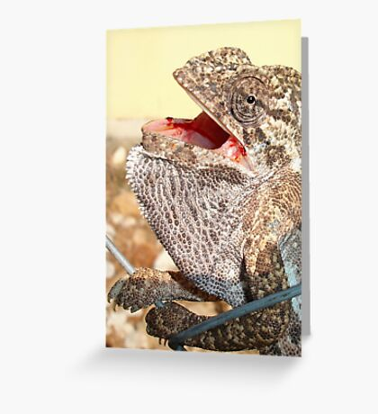 A Chameleon With Open Mouth Greeting Card