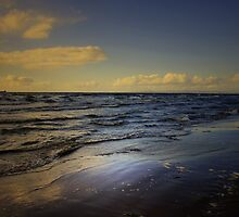 OCEAN WAVES by leonie7