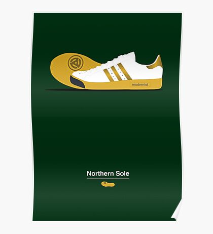 Northern Sole Poster