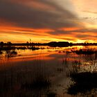 Golden Pond  by MattTworkowski