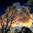 Dusk Closing in up The Murray by Simmone