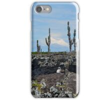 Nesting Blue-Footed Booby, Galapagos Islands iPhone Case/Skin