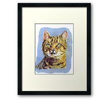Pastel Puss Framed Print