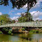 River Severn in Shrewsbury by AnnDixon