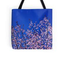 Spring Blossoming of a Sakura Tote Bag